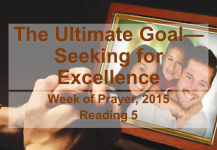 The Ultimate Goal—Seeking for Excellence – Reading 5
